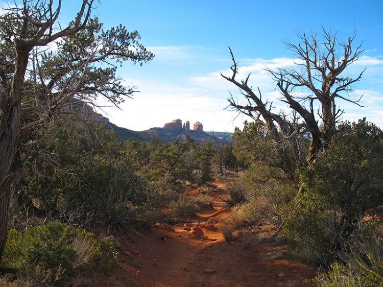 View of Cathedral Rock, Sedona, Arizona